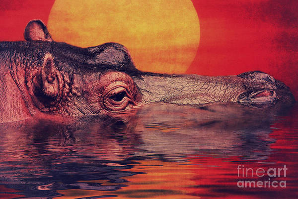 Digital Art - The Hippo by Angela Doelling AD DESIGN Photo and PhotoArt