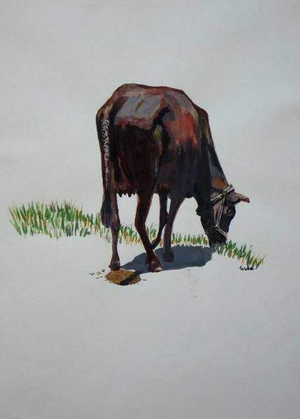 Usha Painting - The Holy Cow And Dung. by Usha Shantharam