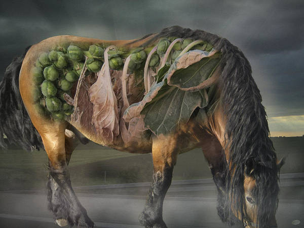 Spout Digital Art - The Horse Of Mr. Roentgen by Nafets Nuarb