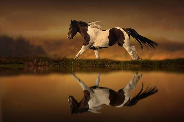 Running Digital Art - The Horse's Journey by Jennifer Woodward