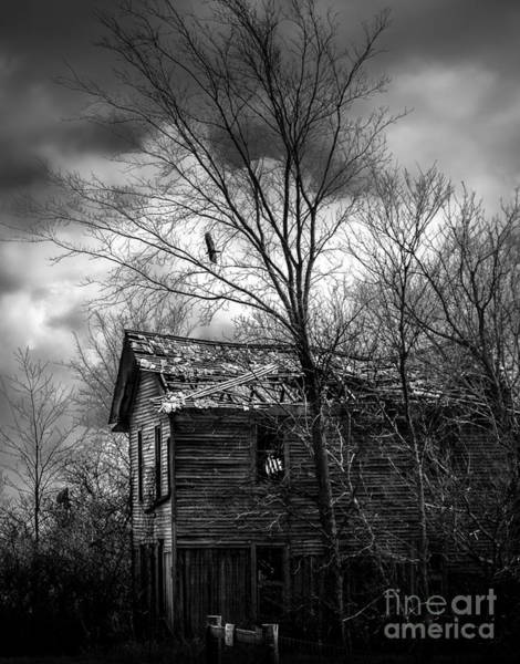 Photograph - The House by Michael Arend