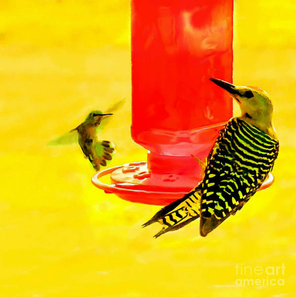 Painting - The Humming Bird And Gila Woodpecker by Bob and Nadine Johnston