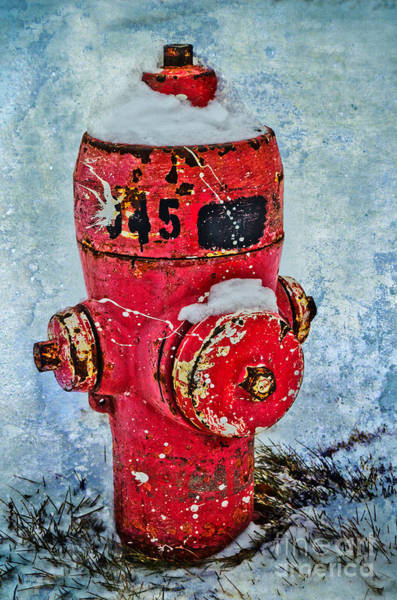 Photograph - The Hydrant by Tara Turner