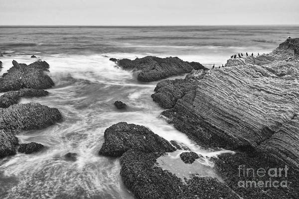 Montana State Photograph - The Jagged Rocks And Cliffs Of Montana De Oro State Park In California In Black And White by Jamie Pham