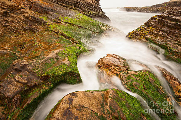 Montana State Photograph - The Jagged Rocks And Cliffs Of Montana De Oro State Park In California by Jamie Pham
