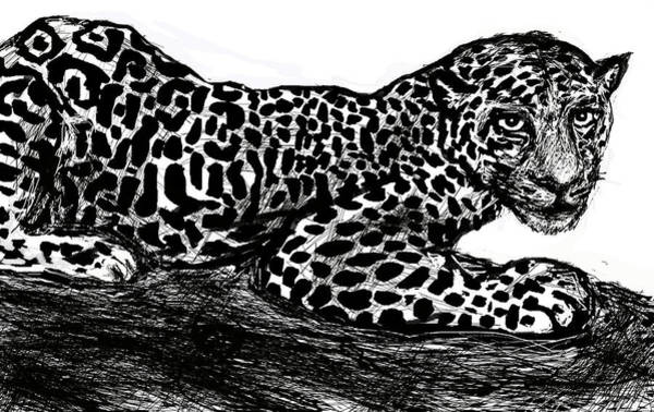 Digital Art - The Jaguar  by Paul Sutcliffe