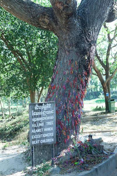 Phnom Penh Wall Art - Photograph - The Killing Tree At Choeung Ek by Cormac Mccreesh