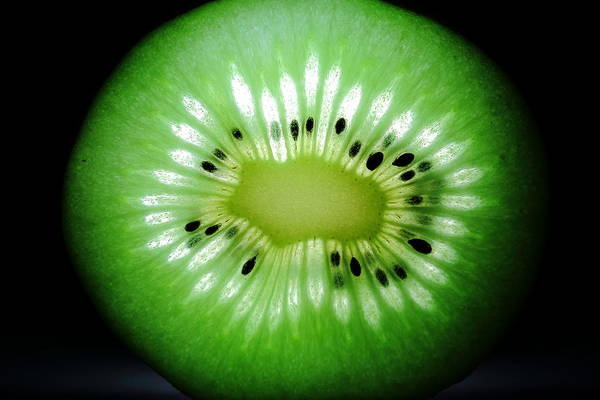 Photograph - The Kiwi Experiment by David Andersen