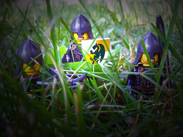 Photograph - The Knights 1 by Cyryn Fyrcyd