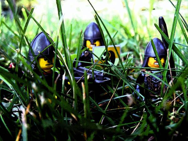 Photograph - The Knights 2 by Cyryn Fyrcyd