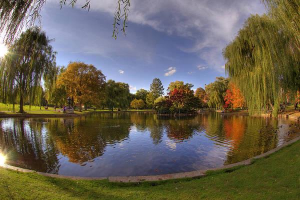 Photograph - The Lagoon - Boston Public Garden by Joann Vitali
