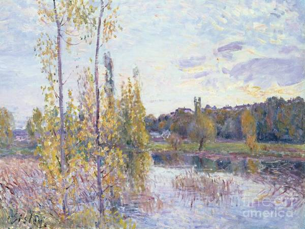Poplar Painting - The Lake At Chevreuil by Alfred Sisley