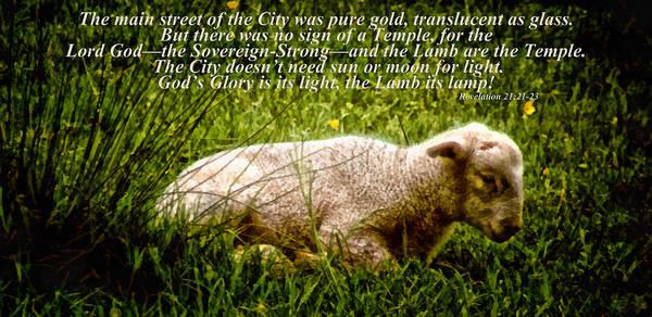 Lamb Of God Wall Art - Mixed Media - The Lamb Revelation 21 by Angelina Tamez
