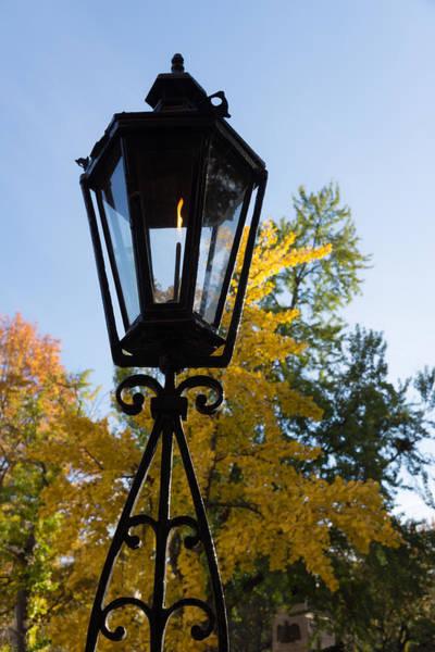 Photograph - The Lantern And The Ginkgo - Retro Autumn Mood by Georgia Mizuleva