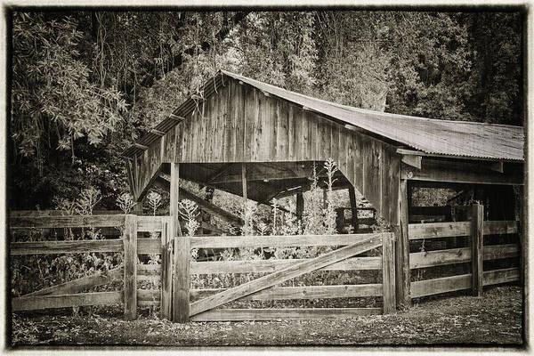 Photograph - The Last Barn by Joan Carroll