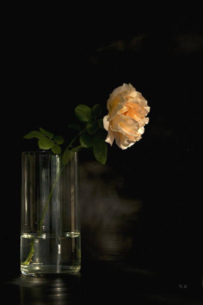 Flowers In A Vase Photograph - The Last Rose Of Summer by Theresa Tahara