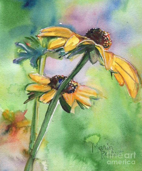 Coneflower Painting - The Last Smile by Maria's Watercolor