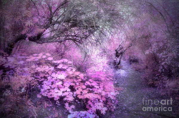 Photograph - The Lavender Dreams Of Trees by Tara Turner