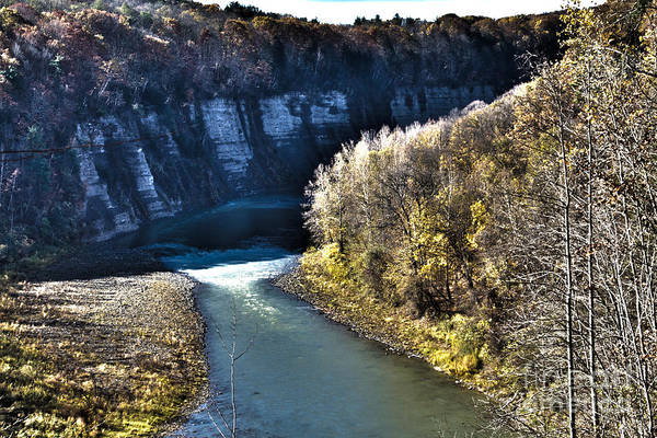 Photograph - The Letchworth Gorge by William Norton