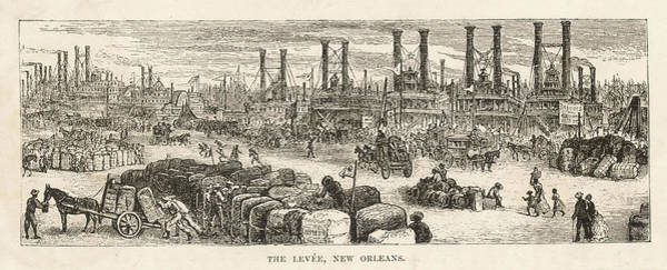 Wall Art - Drawing - The Levee by Mary Evans Picture Library