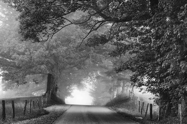 Cades Cove Photograph - The Light Ahead by Andrew Soundarajan