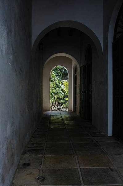 Photograph - The Light At The End Of The Tunnel  by Georgia Mizuleva