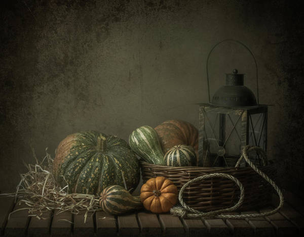 Pumpkins Wall Art - Photograph - The Light In The Barn by Margareth Perfoncio