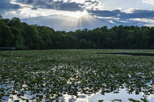 Photograph - The Light Smithville Historic Park New Jersey by Terry DeLuco