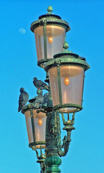 Photograph - Lamp Post by Jennifer Robin