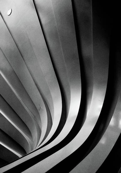 Curved Wall Art - Photograph - The Lines by Kahar Lagaa