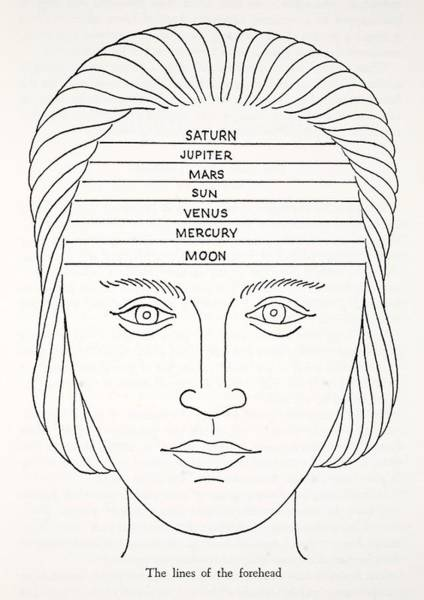 History Of Magic Drawing - The Lines Of The Forehead by English School