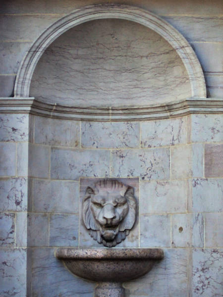 Photograph - The Lion Fountain by Angelina Tamez