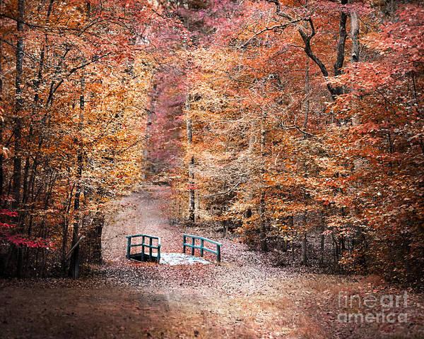 Photograph - The Little Blue Bridge by Jai Johnson