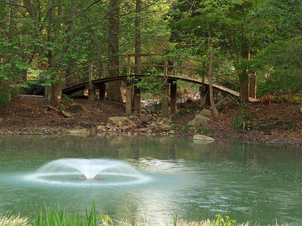 Bob Fisher Photograph - The Little Bridge by Bob Fisher