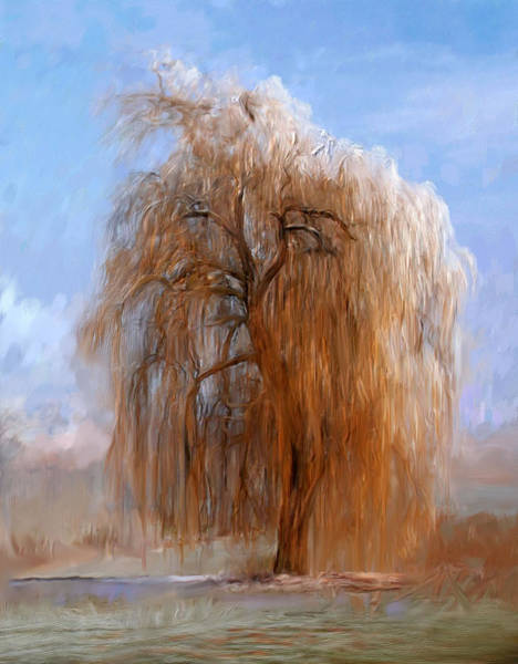 Painting - The Lone Willow Tree by Portraits By NC