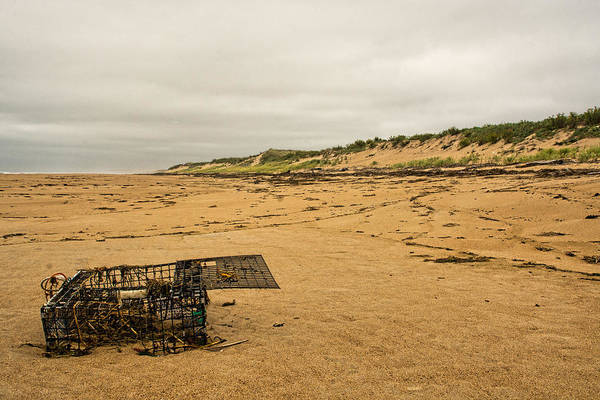 Photograph - The Lobster Trap by Nancy De Flon