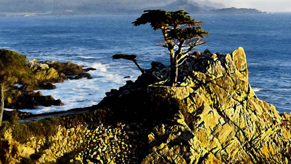 Photograph - The Lone Cypress Carmel California by Bob and Nadine Johnston