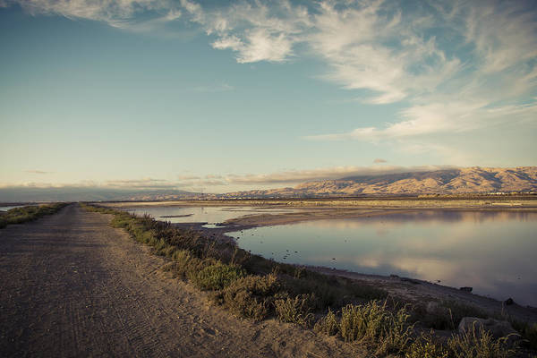 Alviso Photograph - The Lonely Road by Priya Ghose