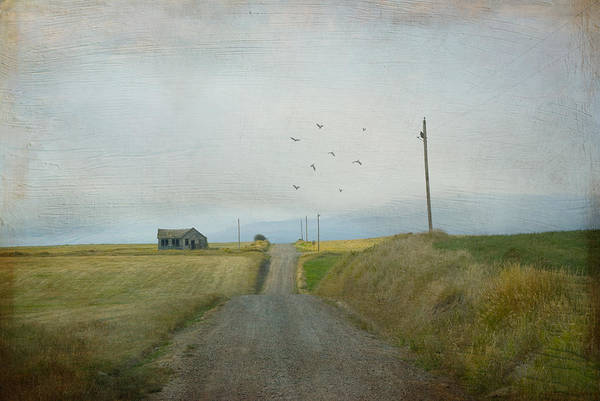 Wall Art - Photograph - The Long Road Home by Juli Scalzi