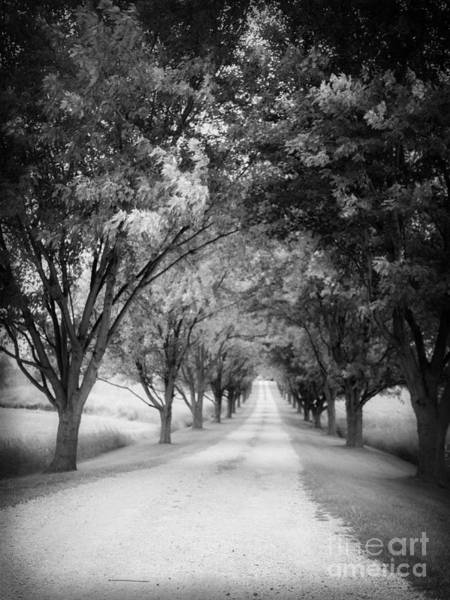 Gravel Road Photograph - The Long Road Home by Edward Fielding