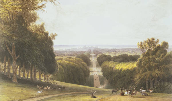 Drive Drawing - The Long Walk, Windsor Park by William Daniell