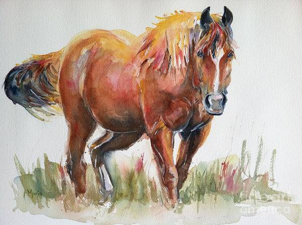 Aqha Painting - Horse Painting In Watercolor The Longest Journey by Maria's Watercolor