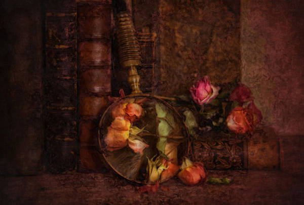 Photograph - The Looking Glass by Robin-Lee Vieira