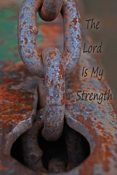 Photograph - The Lord Is My Strength by Jani Freimann