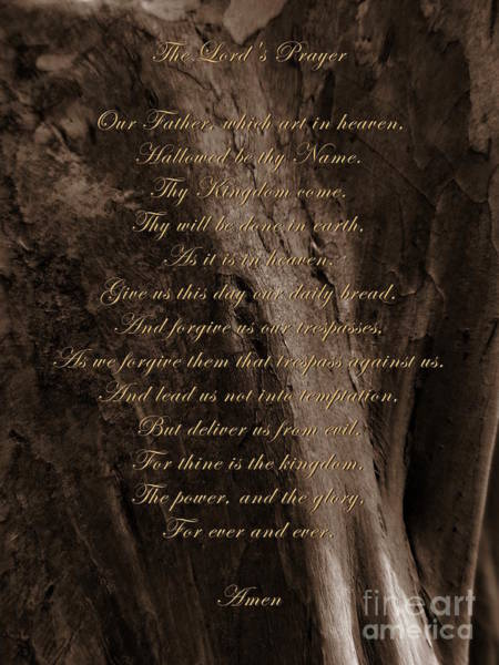 Photograph - The Lord's Prayer by Andrea Anderegg
