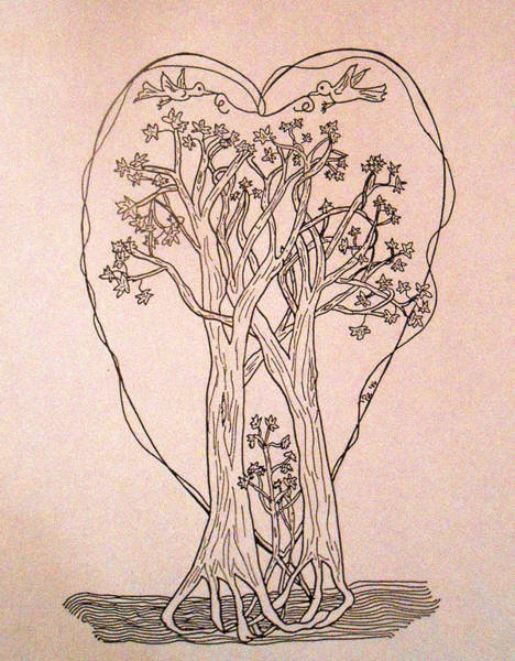 Maple Drawing - The Love And Celebration Of The Maple Tree Family by Patricia Keller