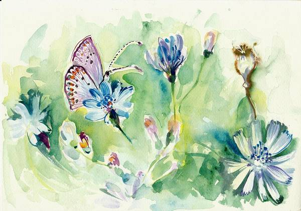 Pavot Wall Art - Painting - The Love Between Butterfly And Chicory by Tiberiu Soos