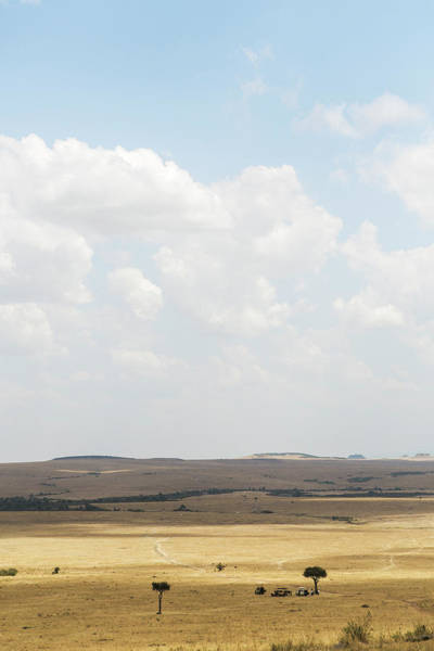 Wall Art - Photograph - The Maasai Mara by Stephen DeVries