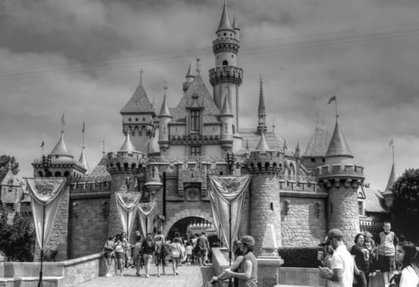 Photograph - The Magic Kingdom by Bill Hamilton