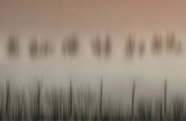 Non-figurative Wall Art - Photograph - The Magic Of A Foggy Morning by Yvette Depaepe